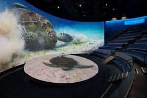 Tempest Zen enclosure Aquarium of the Pacific